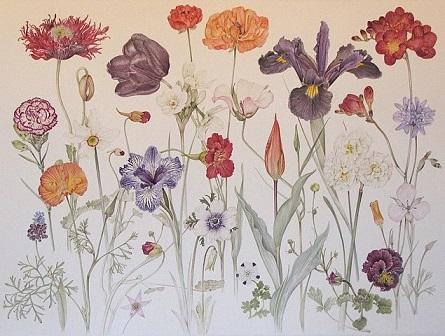 Pamela Glasscock - Delicate Spring